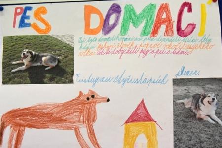 Druhácké třídní projekty